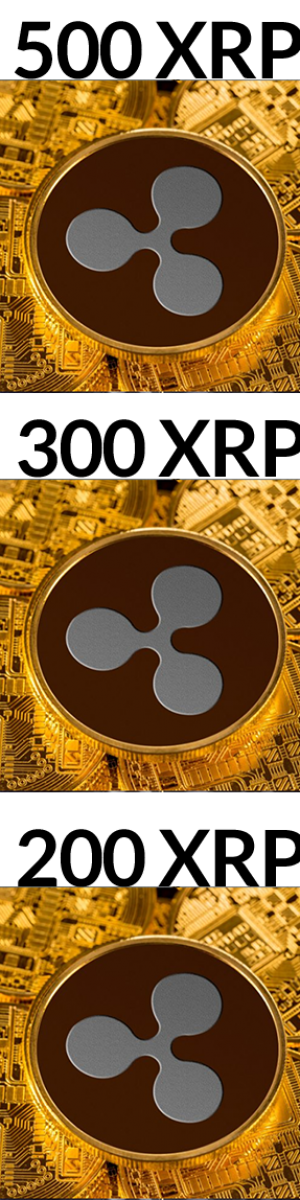 xrp contest winners